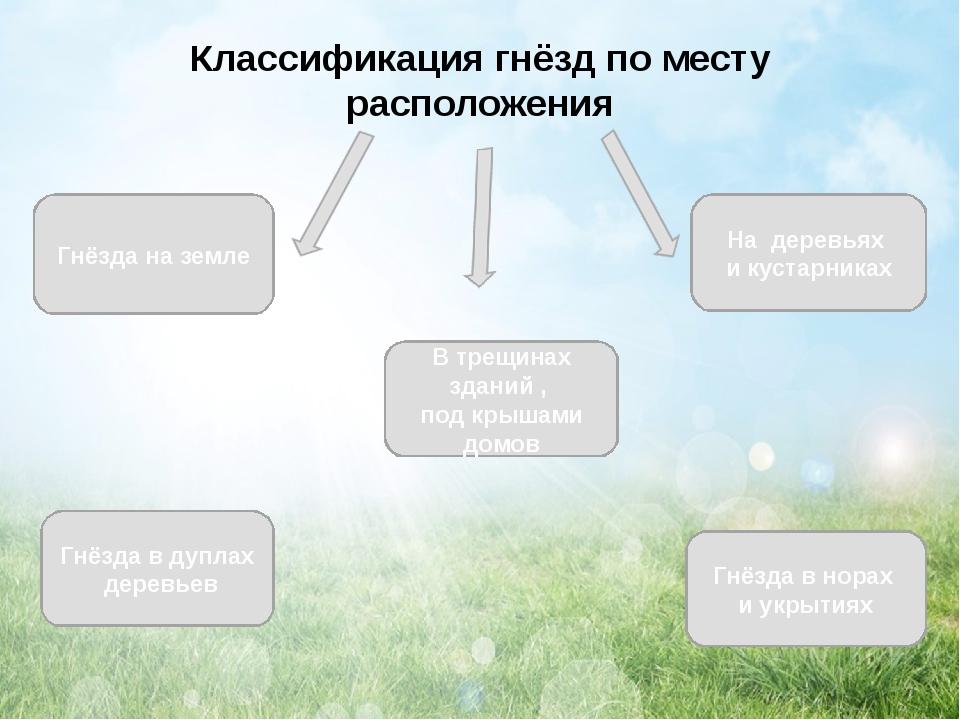 Классификация гнёзд по месту расположения Гнёзда на земле Гнёзда в дуплах дер...