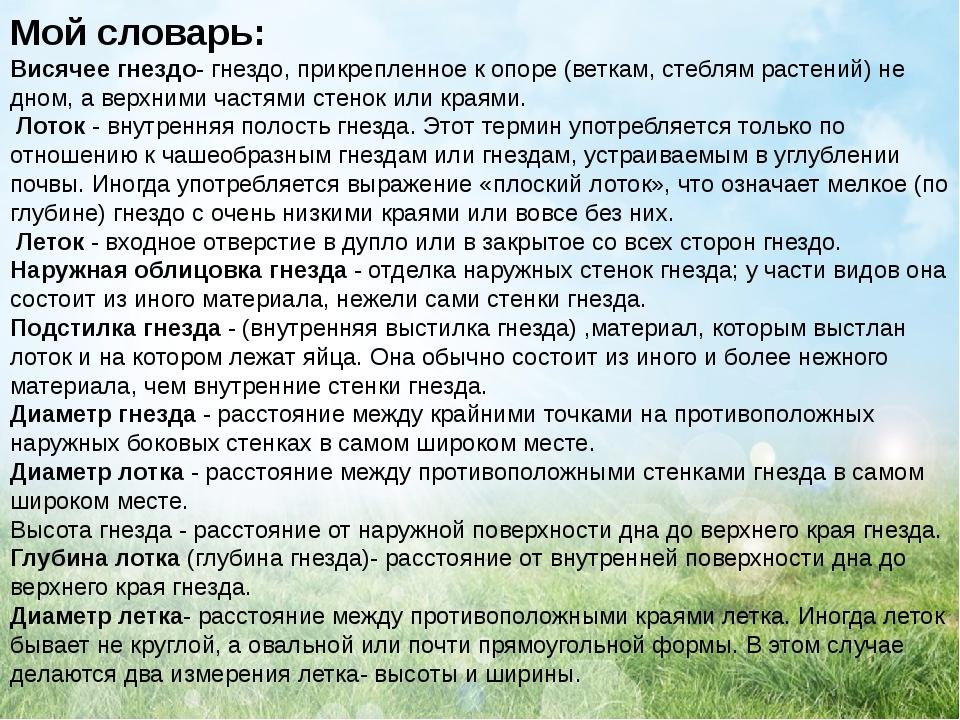 Мой словарь: Висячее гнездо- гнездо, прикрепленное к опоре (веткам, стеблям р...