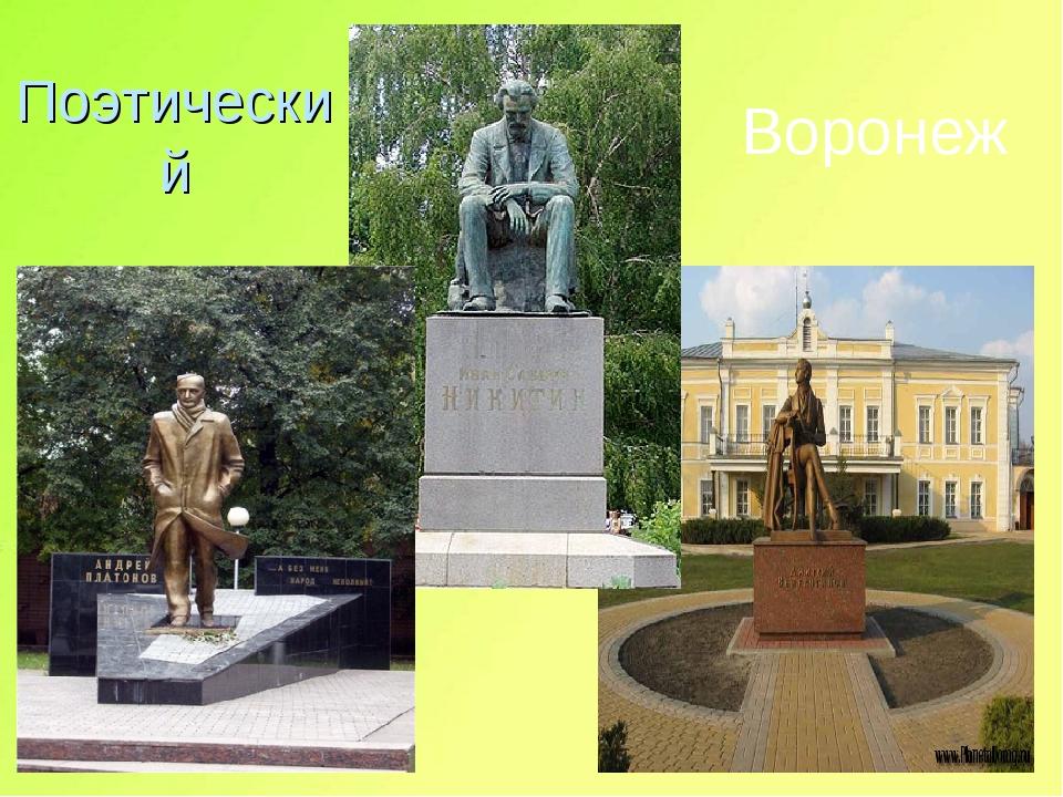 Поэтический Воронеж