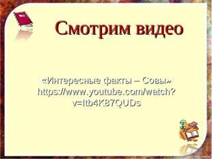 Смотрим видео «Интересные факты – Совы» https://www.youtube.com/watch?v=Itb4