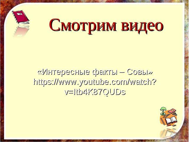 Смотрим видео «Интересные факты – Совы» https://www.youtube.com/watch?v=Itb4...