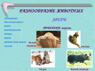ПРИЗНАКИ: шерсть тигры бурый медведь лисица белый медведь НАСЕКОМЫЕ ПРЕСМЫКАЮ