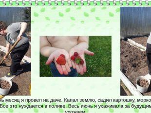 Июнь месяц я провел на даче. Капал землю, садил картошку, морковку. Все это н