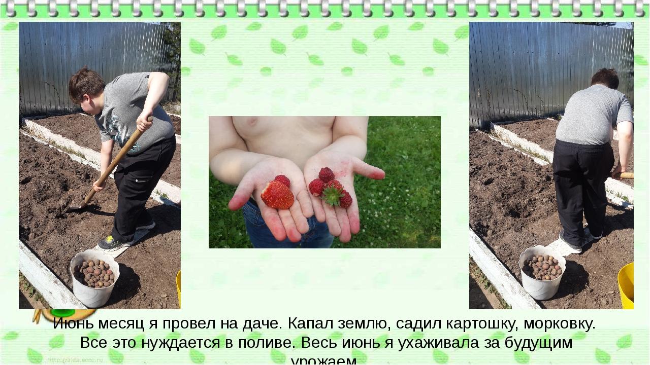 Июнь месяц я провел на даче. Капал землю, садил картошку, морковку. Все это н...
