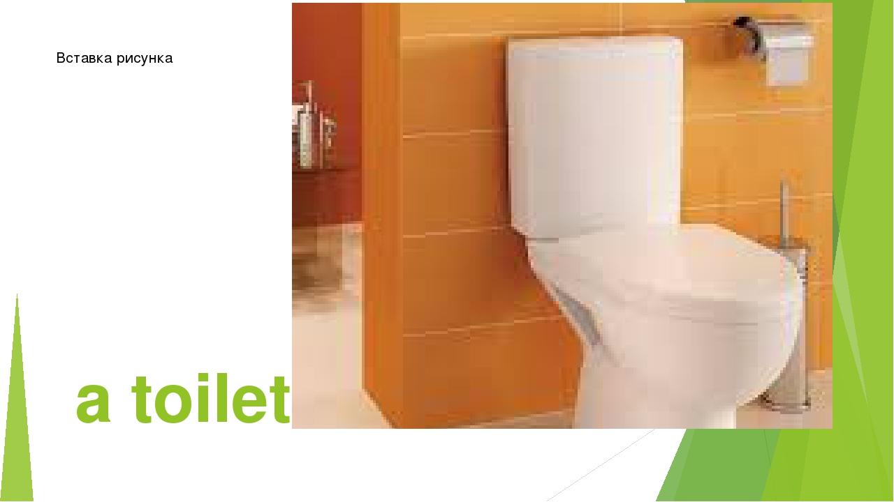 a toilet-