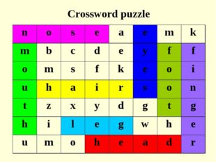 Crossword puzzle noseaemk mbcdeyff omsfkeoi uhairs
