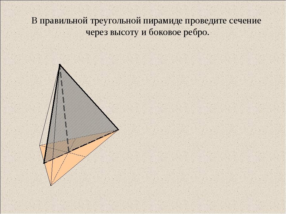 В правильной треугольной пирамиде проведите сечение через высоту и боковое ре...