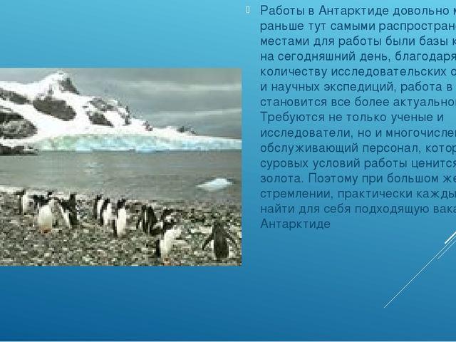 Работы в Антарктиде довольно много. Если раньше тут самыми распространенными...