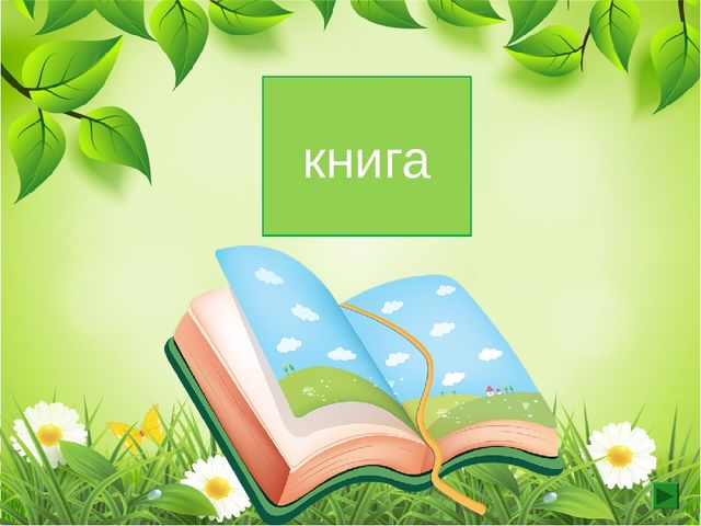 1 скл. ж.р книга