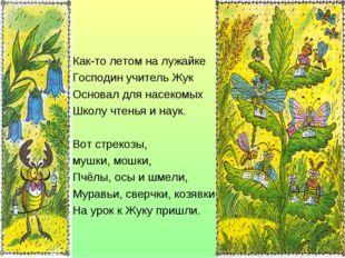 Как-то летом на лужайке Господин учитель Жук Основал для насекомых Школу чтен