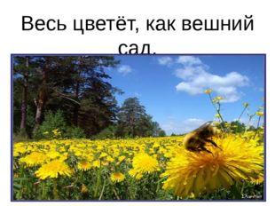 Весь цветёт, как вешний сад.