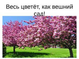 Весь цветёт, как вешний сад!