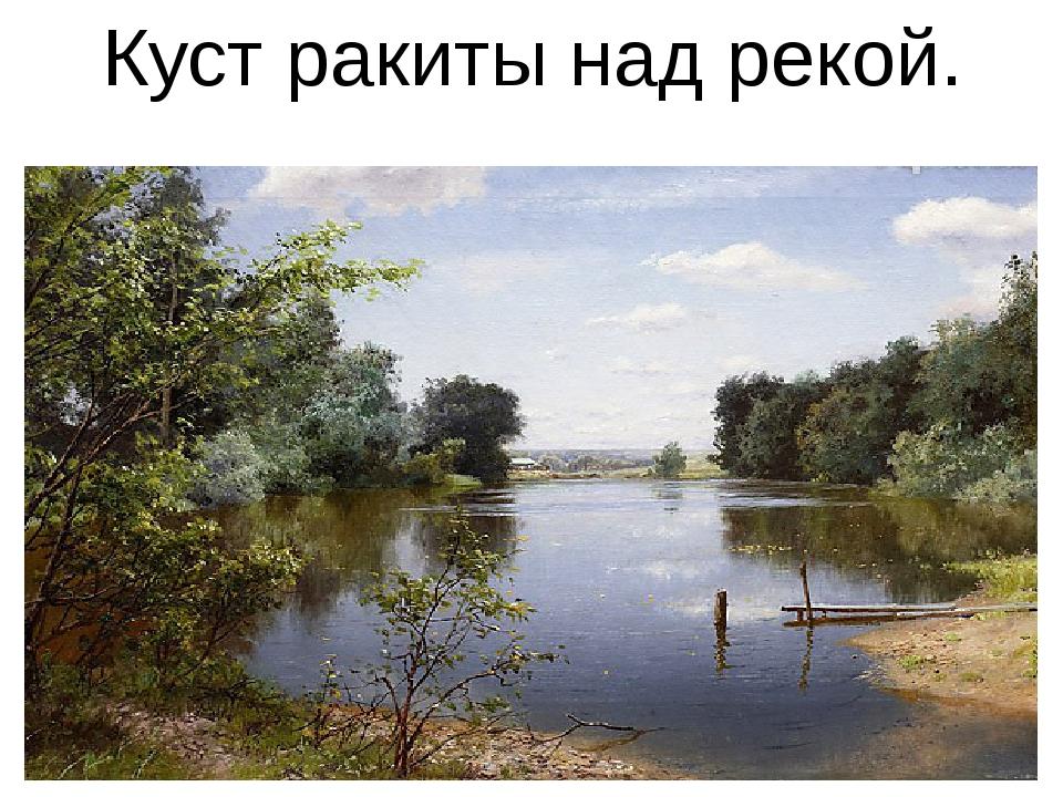 Куст ракиты над рекой.