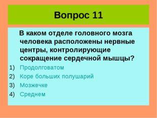 Вопрос 11 В каком отделе головного мозга человека расположены нервные центры,