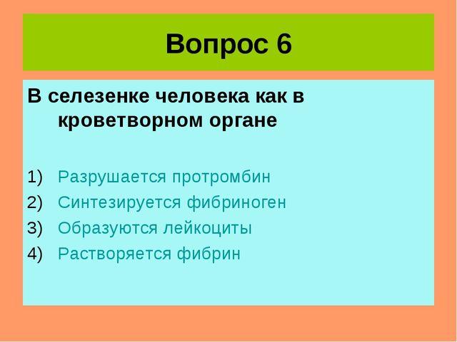 Вопрос 6 В селезенке человека как в кроветворном органе Разрушается протромби...