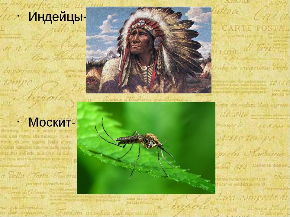 Индейцы- Москит-