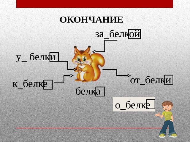 белка к_белке от_белки за_белкой у_ белки о_белке ОКОНЧАНИЕ
