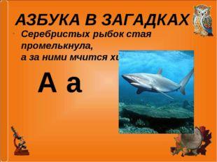 Серебристых рыбок стая промелькнула, а за ними мчится хищная … . АЗБУКА В ЗАГ
