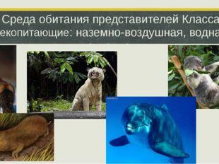 Среда обитания представителей Класса Млекопитающие: наземно-воздушная, водная
