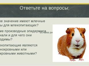 Ответьте на вопросы: 1.Какое значение имеют млечные железы для млекопитающих?