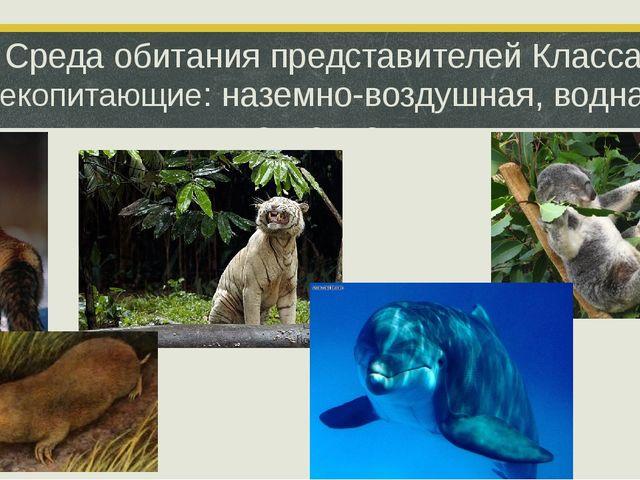 Среда обитания представителей Класса Млекопитающие: наземно-воздушная, водная...