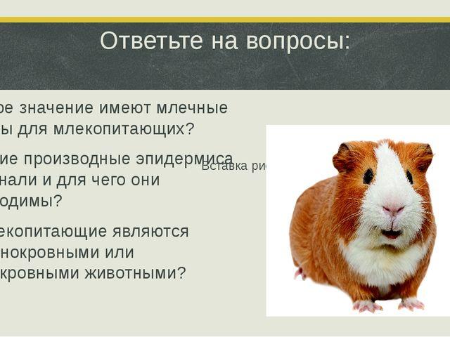 Ответьте на вопросы: 1.Какое значение имеют млечные железы для млекопитающих?...