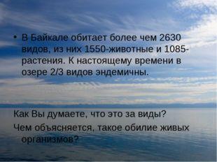 В Байкале обитает более чем 2630 видов, из них 1550-животные и 1085-растения.
