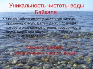Уникальность чистоты воды Байкала. Озеро Байкал имеет уникальную чистую прозр