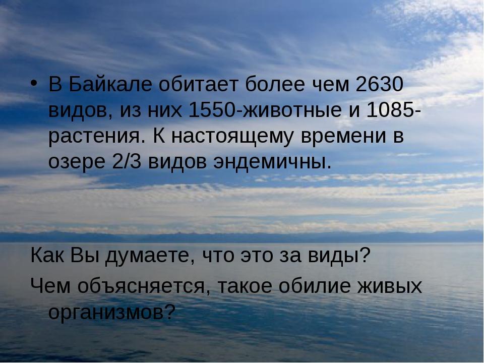 В Байкале обитает более чем 2630 видов, из них 1550-животные и 1085-растения....