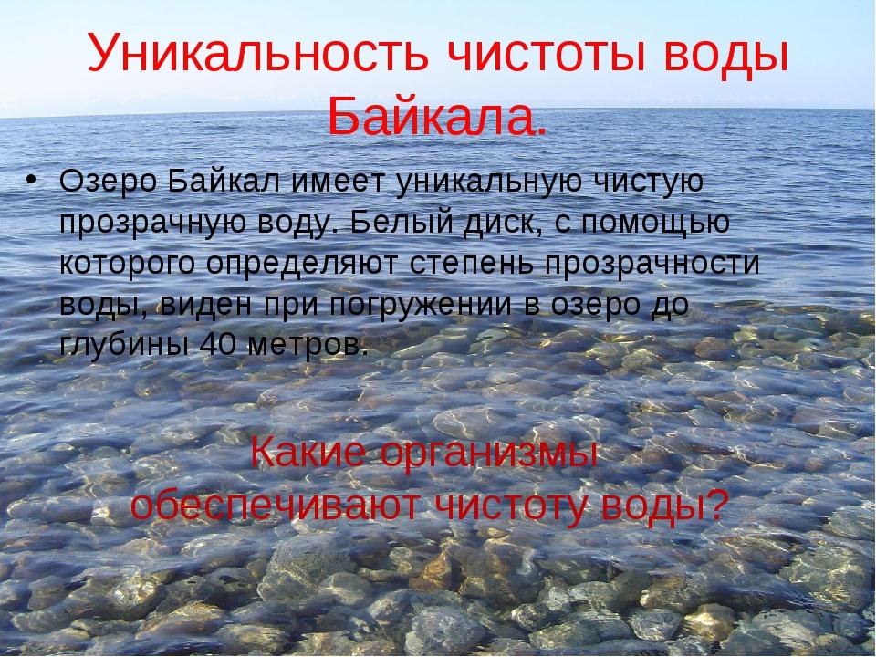 Уникальность чистоты воды Байкала. Озеро Байкал имеет уникальную чистую прозр...