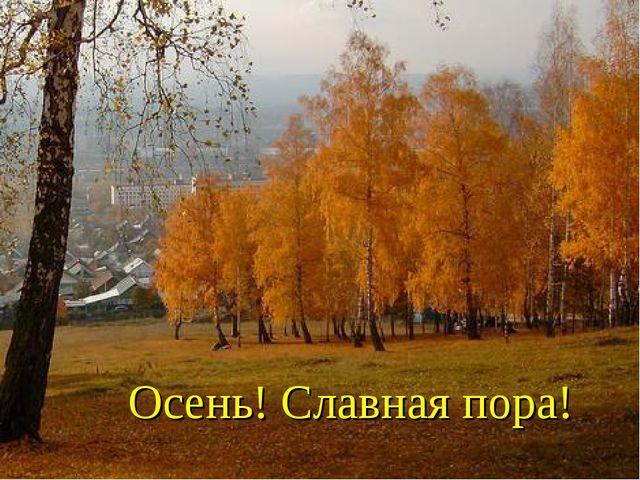 Осень! Славная пора!