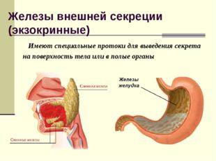 Железы внешней секреции (экзокринные) Имеют специальные протоки для выведения