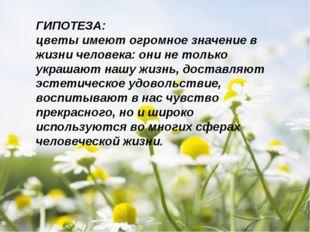 ГИПОТЕЗА: цветы имеют огромное значение в жизни человека: они не только украш
