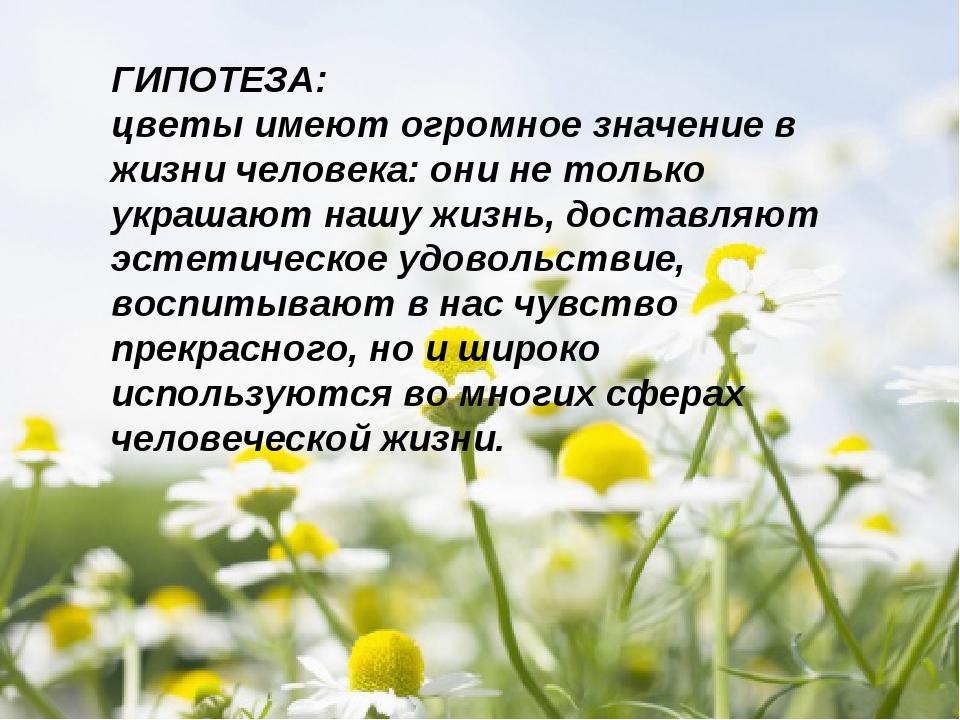 ГИПОТЕЗА: цветы имеют огромное значение в жизни человека: они не только украш...
