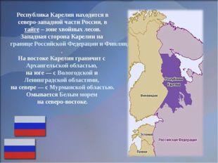 Республика Карелия находится в северо-западной части России, в тайге – зоне х
