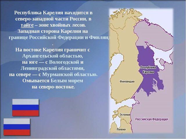 Республика Карелия находится в северо-западной части России, в тайге – зоне х...