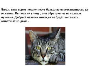 Люди, взяв в дом кошку несут большую ответственность за ее жизнь. Выгнав на у