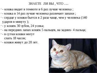 ЗНАЕТЕ ЛИ ВЫ , ЧТО … - кошка видит в темноте в 6 раз лучше человека ; - кошка