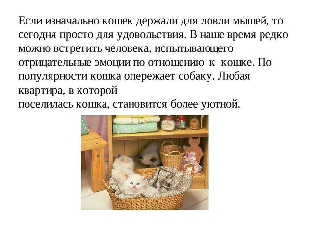 Если изначально кошек держали для ловли мышей, то сегодня просто для удовольс...