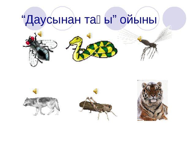 """""""Даусынан таңы"""" ойыны"""