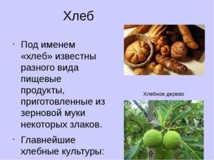 Хлеб Под именем «хлеб» известны разного вида пищевые продукты, приготовленные