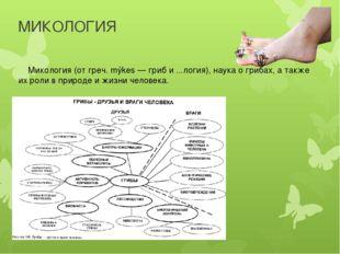МИКОЛОГИЯ Микология (от греч. mýkes — гриб и ...логия), наука о грибах, а так