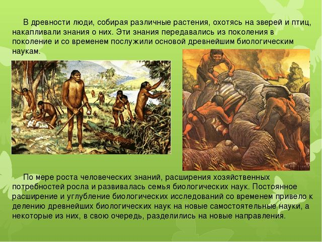 В древности люди, собирая различные растения, охотясь на зверей и птиц, нака...