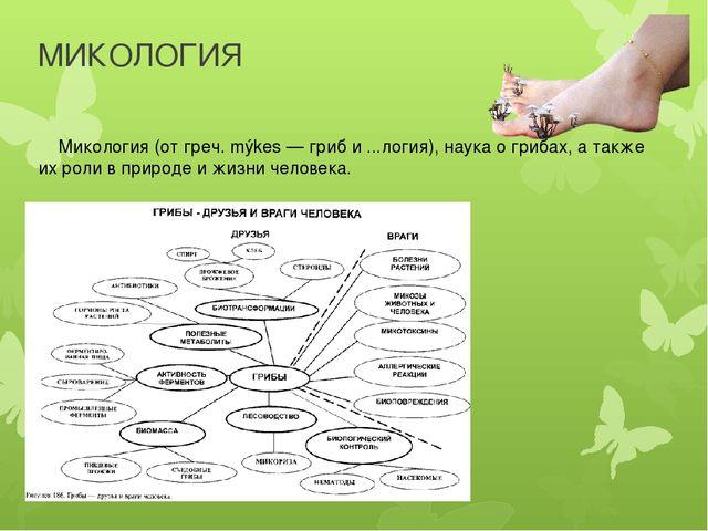 МИКОЛОГИЯ Микология (от греч. mýkes — гриб и ...логия), наука о грибах, а так...
