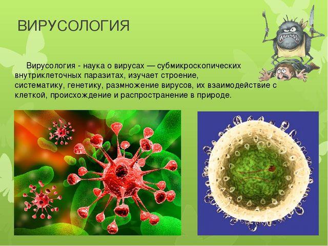ВИРУСОЛОГИЯ Вирусология - наука о вирусах — субмикроскопических внутриклеточн...