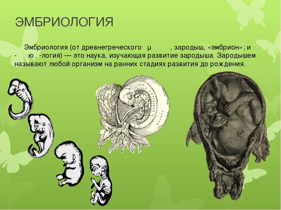 ЭМБРИОЛОГИЯ Эмбриология (от древнегреческого ἔμβρυον, зародыш, «эмбрион»; и -...