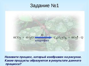 Задание №1 Назовите процесс, который изображен на рисунке. Какие продукты обр