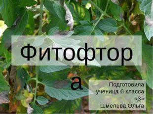Фитофтора Подготовила ученица 6 класса «З» Шмелева Ольга