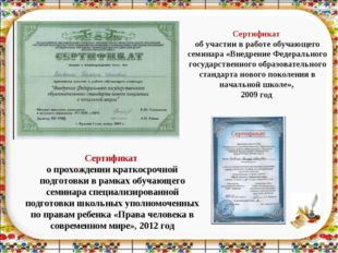 Сертификат об участии в работе обучающего семинара «Внедрение Федерального го