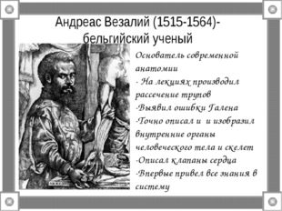 Андреас Везалий (1515-1564)- бельгийский ученый Основатель современной анатом